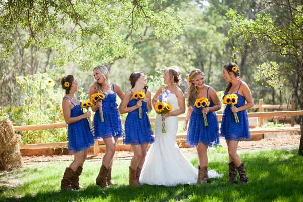 Royal Blue And Sunflower Rustic Wedding